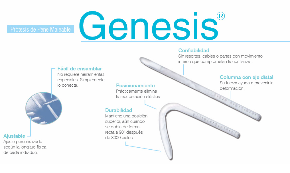 Genesis Descripcion Grafica